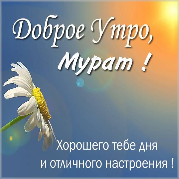 Картинка с именем Мурат доброе утро - скачать бесплатно на otkrytkivsem.ru
