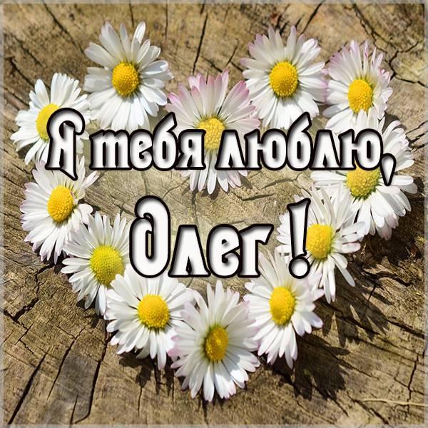 Картинка с именем Олег я тебя люблю - скачать бесплатно на otkrytkivsem.ru