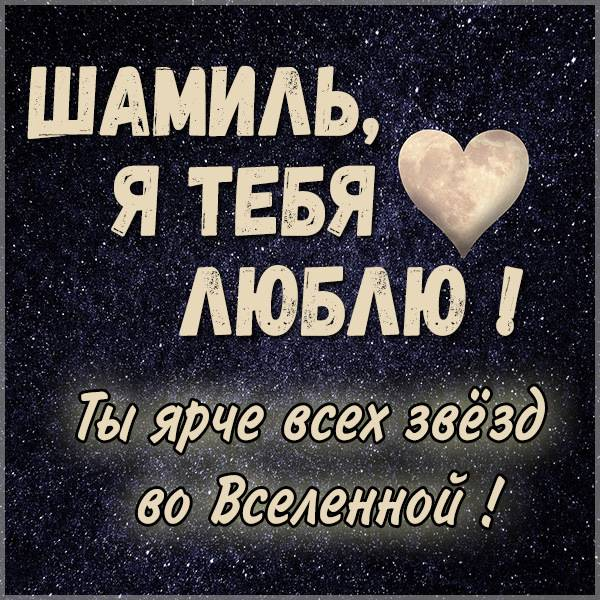 Картинка с именем Шамиль я тебя люблю - скачать бесплатно на otkrytkivsem.ru