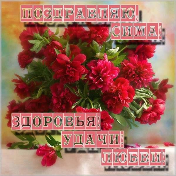Картинка с именем Сима - скачать бесплатно на otkrytkivsem.ru