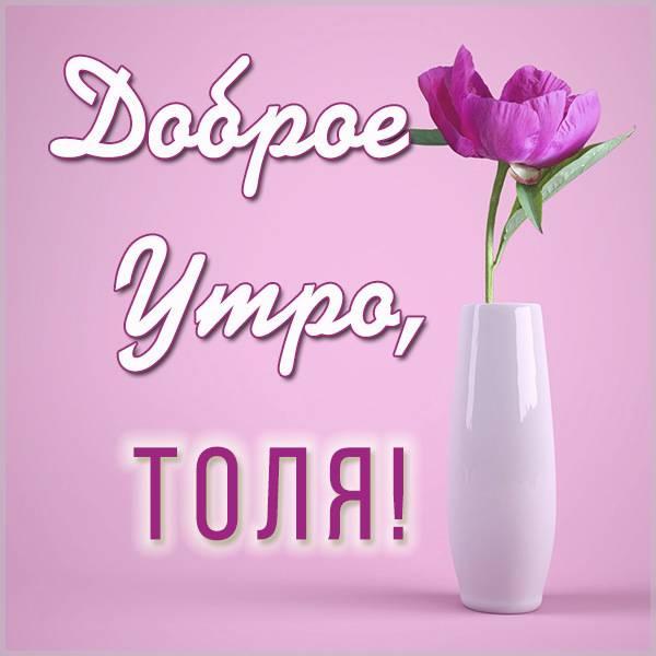 Картинка с именем Толя доброе утро - скачать бесплатно на otkrytkivsem.ru
