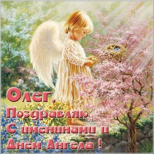 Картинка с красивым поздравлением с днем Олега - скачать бесплатно на otkrytkivsem.ru