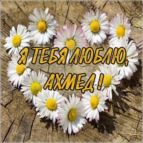 Картинка с надписью Ахмед я тебя люблю - скачать бесплатно на otkrytkivsem.ru
