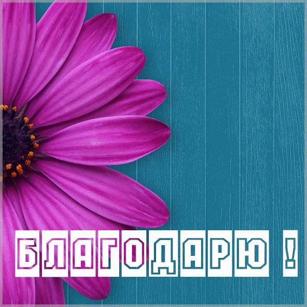 Картинка с надписью благодарю - скачать бесплатно на otkrytkivsem.ru