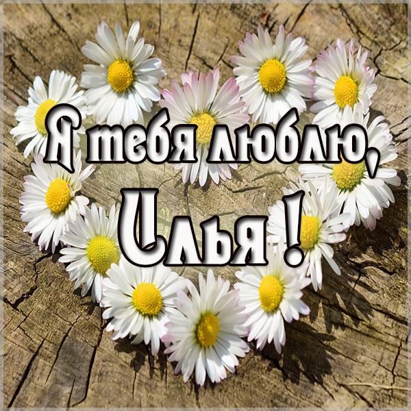 Картинка с надписью Илья я тебя люблю - скачать бесплатно на otkrytkivsem.ru