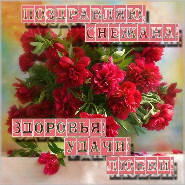 Картинка с надписью Снежана - скачать бесплатно на otkrytkivsem.ru