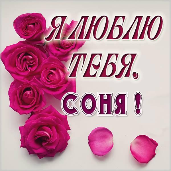 Картинка с надписью Соня я тебя люблю - скачать бесплатно на otkrytkivsem.ru