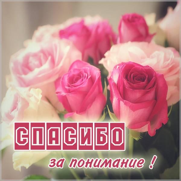 Картинка с надписью спасибо за понимание - скачать бесплатно на otkrytkivsem.ru