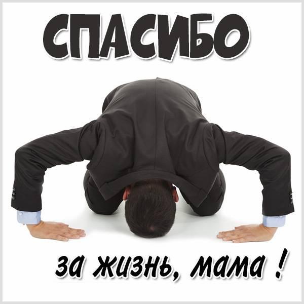Картинка с надписью спасибо за жизнь мама - скачать бесплатно на otkrytkivsem.ru