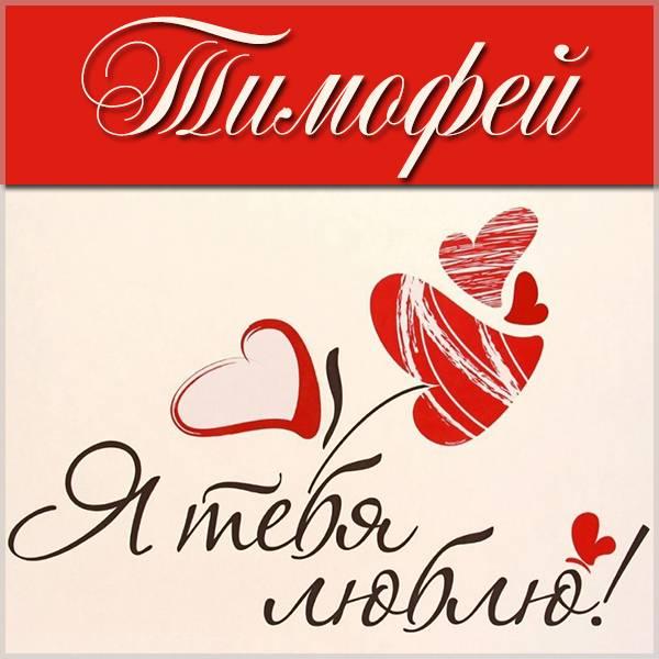 Картинка с надписью Тимофей я тебя люблю - скачать бесплатно на otkrytkivsem.ru