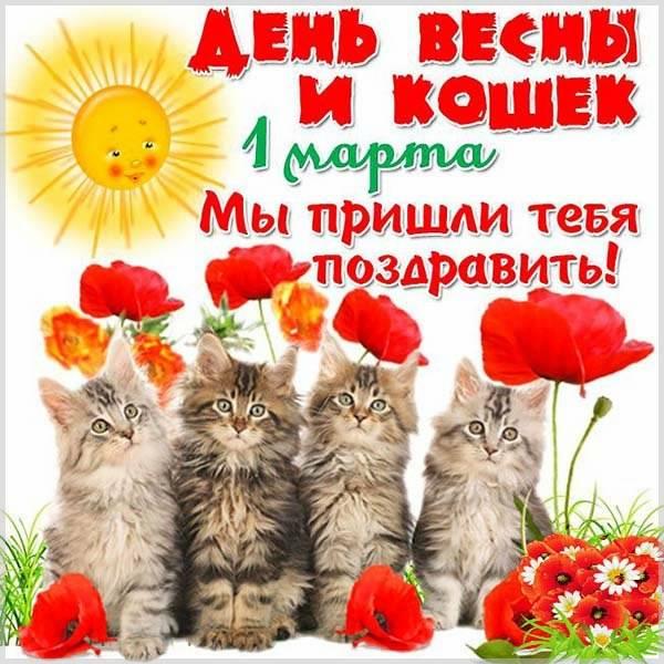 Картинка с поздравлением с днем кошек - скачать бесплатно на otkrytkivsem.ru