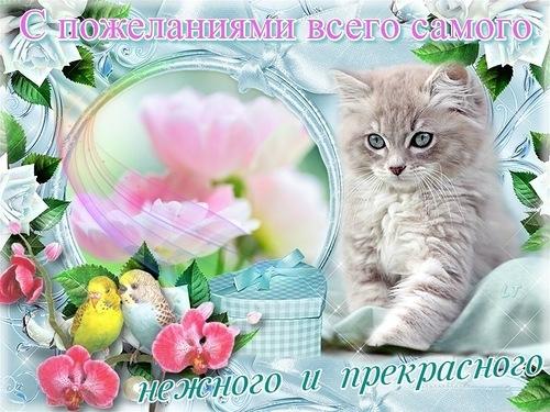 Картинка с пожеланием для друзей - скачать бесплатно на otkrytkivsem.ru