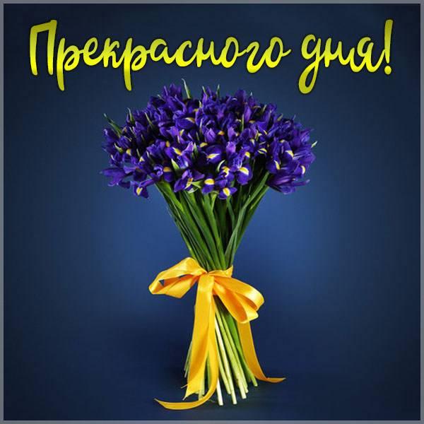 Картинка с пожеланием прекрасного дня женщине - скачать бесплатно на otkrytkivsem.ru