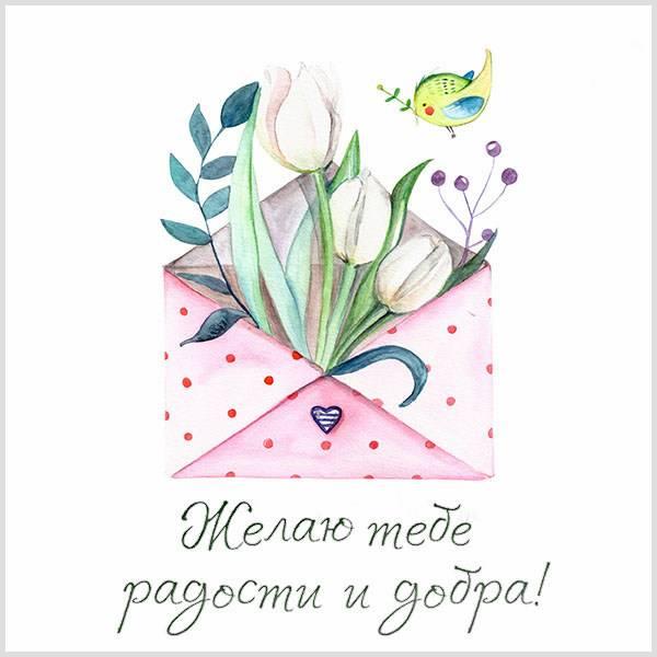 Картинка с пожеланием радости и добра - скачать бесплатно на otkrytkivsem.ru