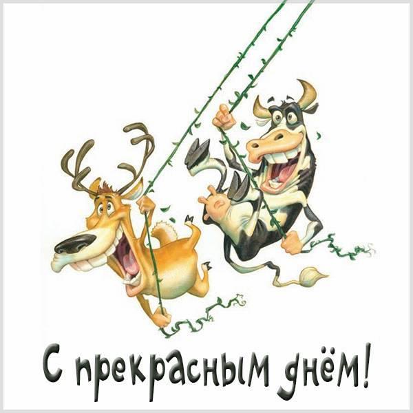 Картинка с прекрасным днем шутки - скачать бесплатно на otkrytkivsem.ru