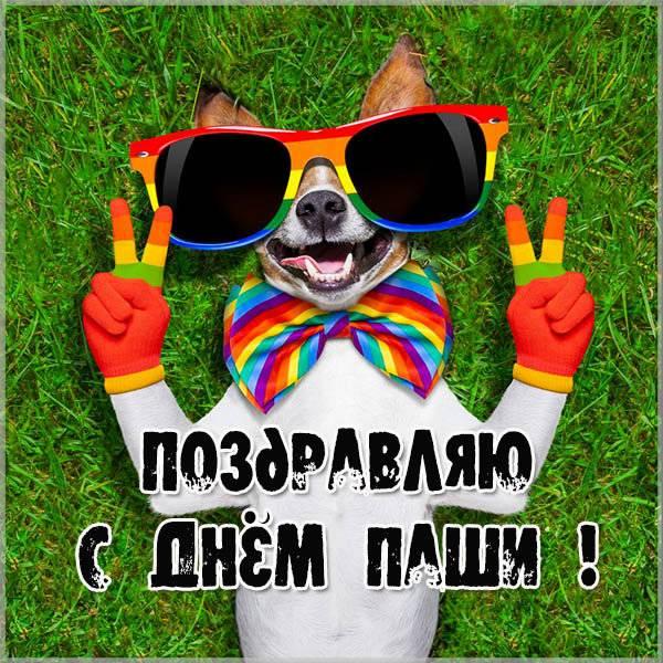 Картинка с прекрасным поздравлением с днем Паши - скачать бесплатно на otkrytkivsem.ru