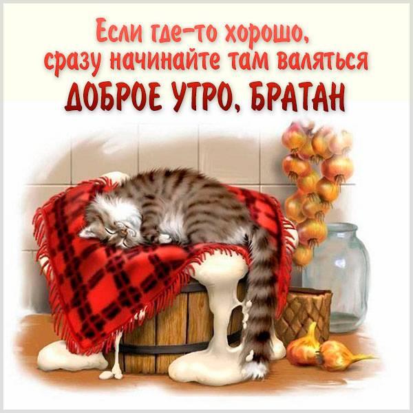 Картинка с приколом доброе утро братан - скачать бесплатно на otkrytkivsem.ru