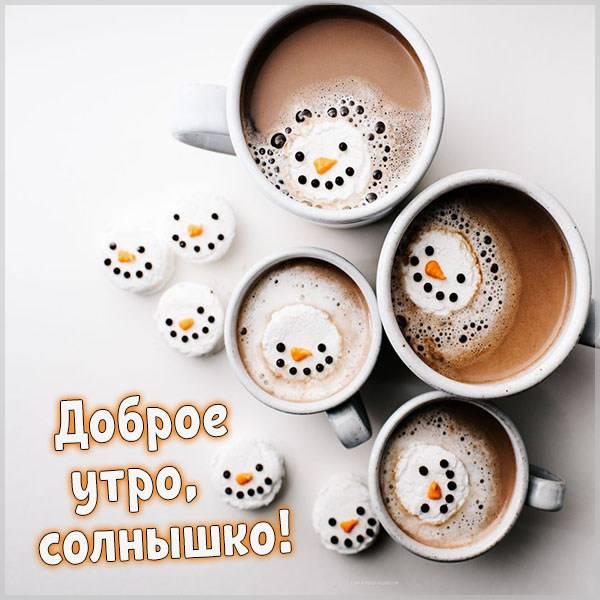 Картинка с приколом доброе утро солнышко - скачать бесплатно на otkrytkivsem.ru