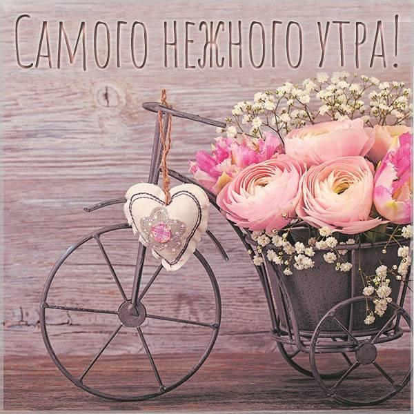 Картинка самого нежного утра - скачать бесплатно на otkrytkivsem.ru