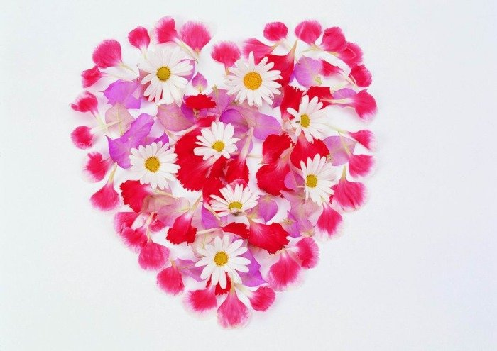 Картинка сердечко из цветов - скачать бесплатно на otkrytkivsem.ru
