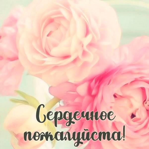 Картинка сердечное пожалуйста - скачать бесплатно на otkrytkivsem.ru