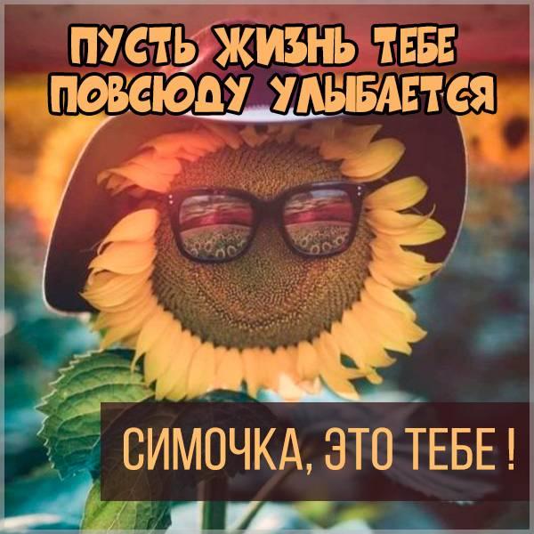 Картинка Симочка это тебе - скачать бесплатно на otkrytkivsem.ru
