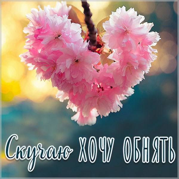 Картинка скучаю хочу обнять - скачать бесплатно на otkrytkivsem.ru