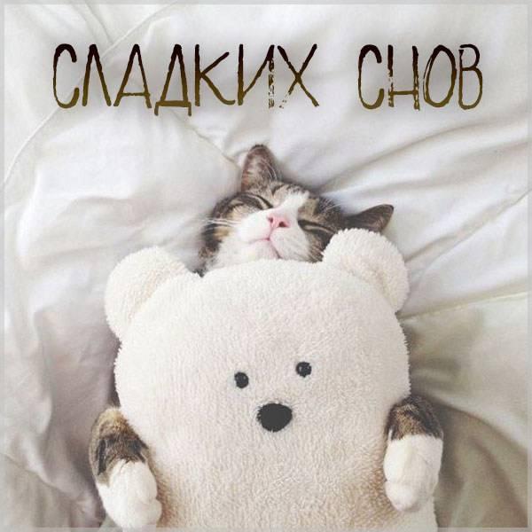 Картинка сладких снов для парня прикольная - скачать бесплатно на otkrytkivsem.ru