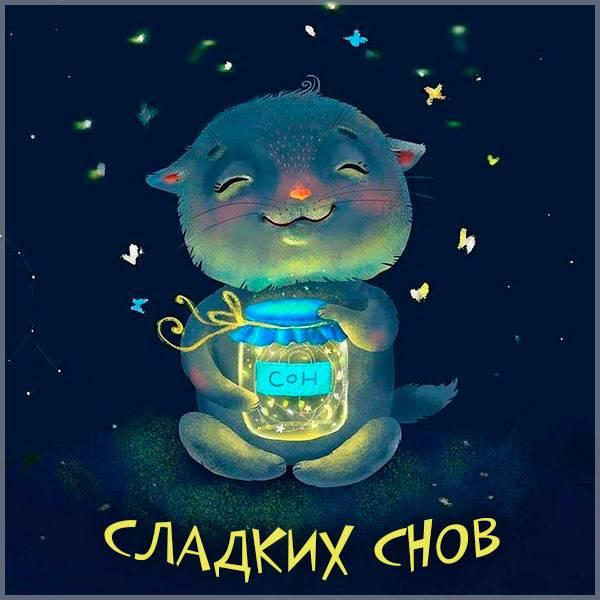 Картинка сладких снов прикольная смешная - скачать бесплатно на otkrytkivsem.ru