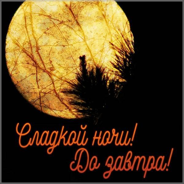 Картинка сладкой ночи до завтра - скачать бесплатно на otkrytkivsem.ru