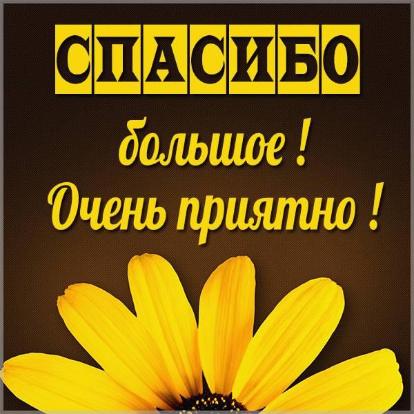 Картинка со словами спасибо большое очень приятно - скачать бесплатно на otkrytkivsem.ru