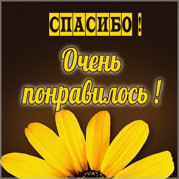 Картинка со словами спасибо очень понравилось - скачать бесплатно на otkrytkivsem.ru
