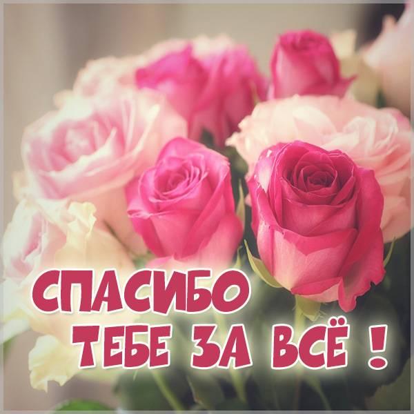 Картинка со словами спасибо тебе за все - скачать бесплатно на otkrytkivsem.ru