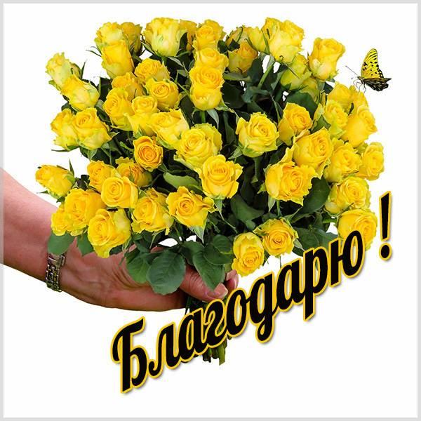 Картинка со словом благодарю - скачать бесплатно на otkrytkivsem.ru