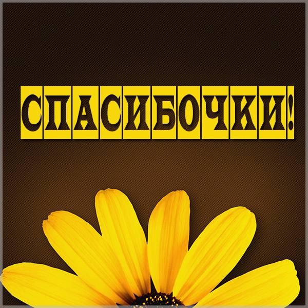 Картинка со словом спасибочки - скачать бесплатно на otkrytkivsem.ru