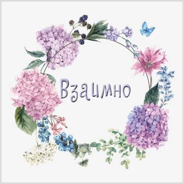 Картинка со словом взаимно - скачать бесплатно на otkrytkivsem.ru