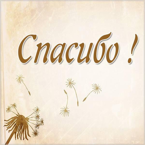 Картинка со спасибо бесплатная красивая - скачать бесплатно на otkrytkivsem.ru
