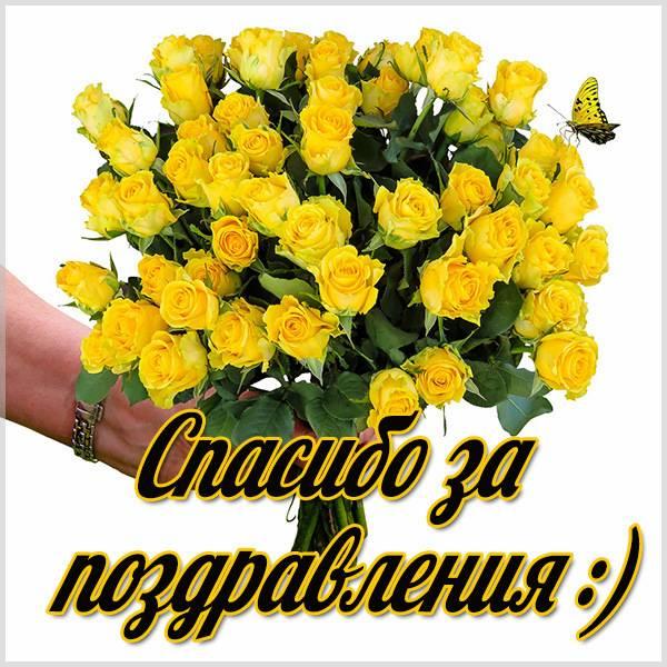 Картинка со спасибо за поздравления - скачать бесплатно на otkrytkivsem.ru