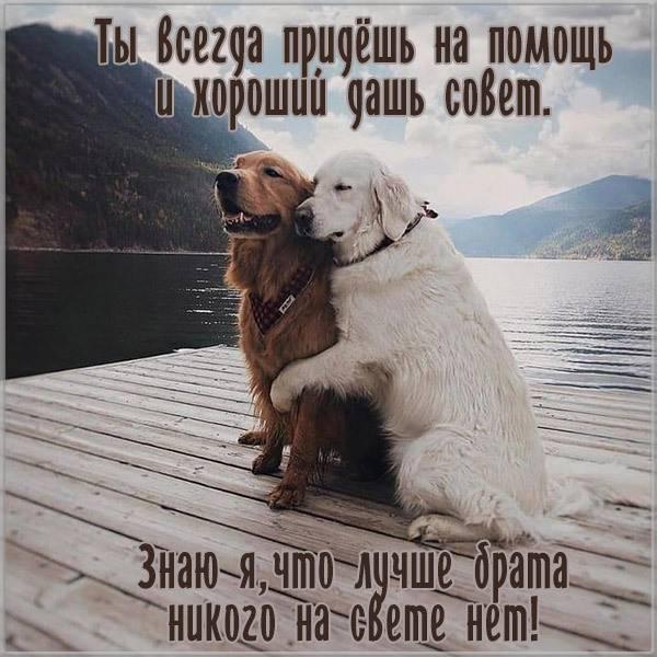 Картинка со стихами для брата - скачать бесплатно на otkrytkivsem.ru