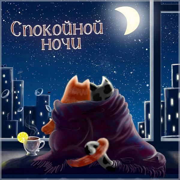Картинка со зверями спокойной ночи - скачать бесплатно на otkrytkivsem.ru