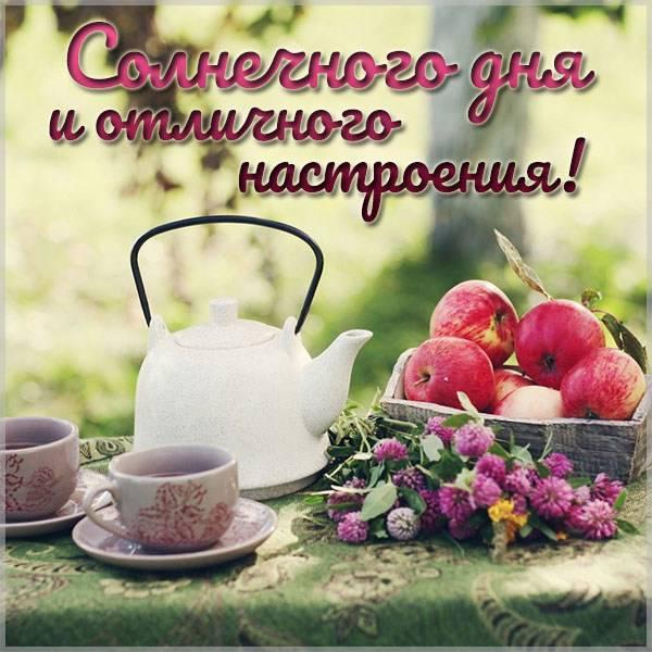 Картинка солнечного дня и отличного настроения - скачать бесплатно на otkrytkivsem.ru