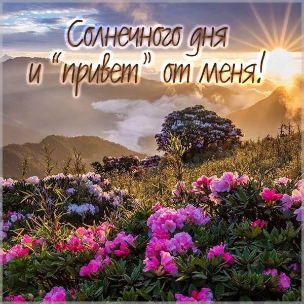 Картинка солнечного дня и привет от меня - скачать бесплатно на otkrytkivsem.ru