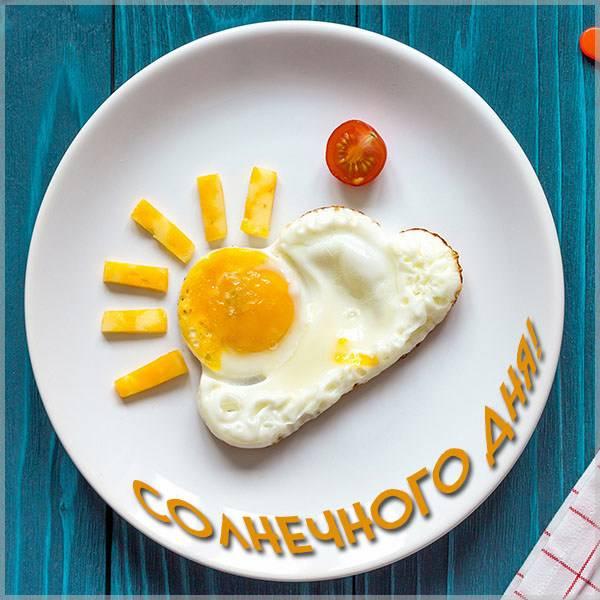 Картинка солнечного дня прикольная - скачать бесплатно на otkrytkivsem.ru