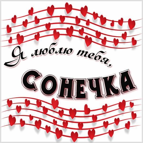 Картинка Сонечка я тебя люблю - скачать бесплатно на otkrytkivsem.ru