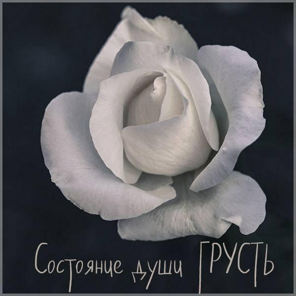 Картинка состояние души грусть - скачать бесплатно на otkrytkivsem.ru