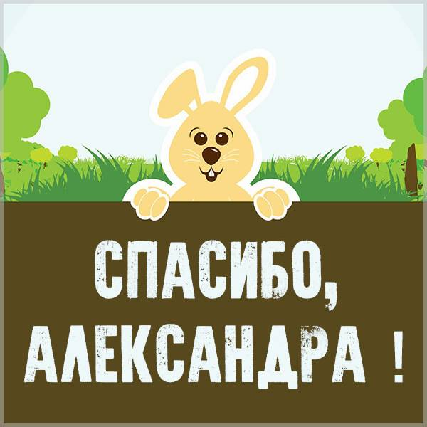 Картинка спасибо Александра - скачать бесплатно на otkrytkivsem.ru