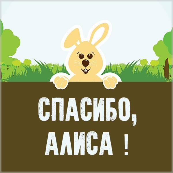 Картинка спасибо Алиса - скачать бесплатно на otkrytkivsem.ru