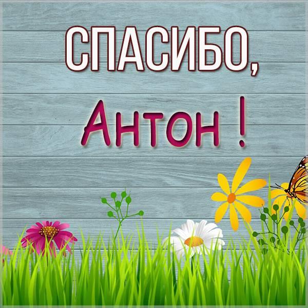 Картинка спасибо Антон - скачать бесплатно на otkrytkivsem.ru