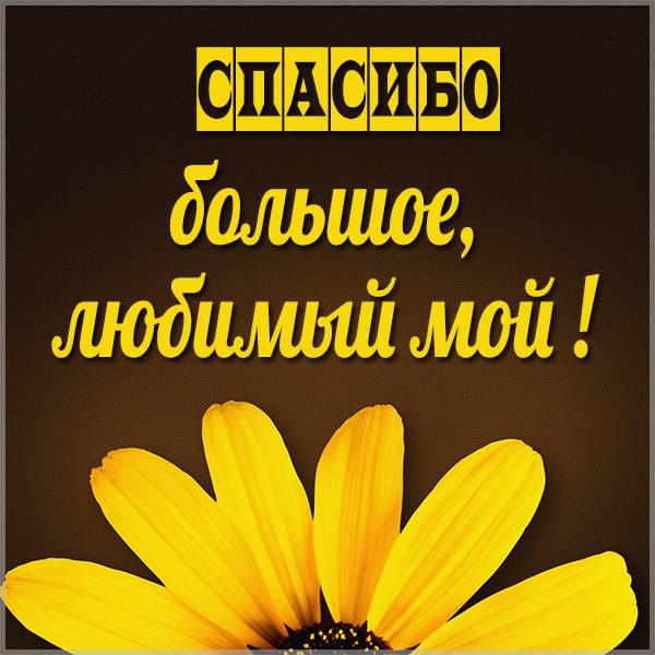 Картинка спасибо большое любимый - скачать бесплатно на otkrytkivsem.ru