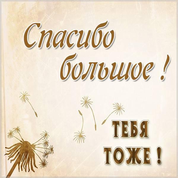 Картинка спасибо большое тебя тоже - скачать бесплатно на otkrytkivsem.ru